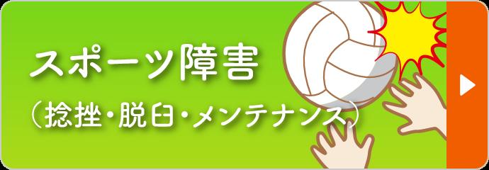 スポーツ障害(捻挫・脱臼・メンテナンス)
